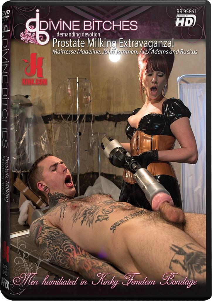 DVD - Prostate Milking Extravaganza!